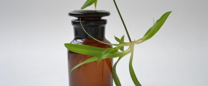 Cosmétiques bio et produits naturels, c'est bon pour la peau